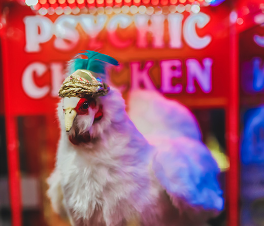 Psychic Chicken